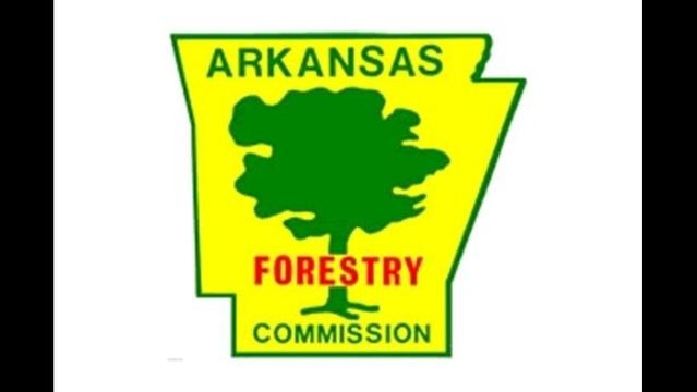 Ark. Forestry Commission Working Through the Night to Locate Pilot, Plane