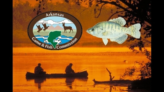 30 Per Day Statewide Crappie Limit Proposed