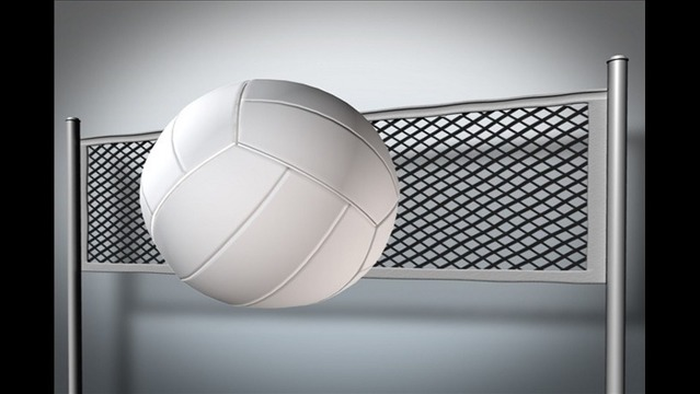 Joint Grant for Bryant Parks, School District to Buy Volleyball Equipment