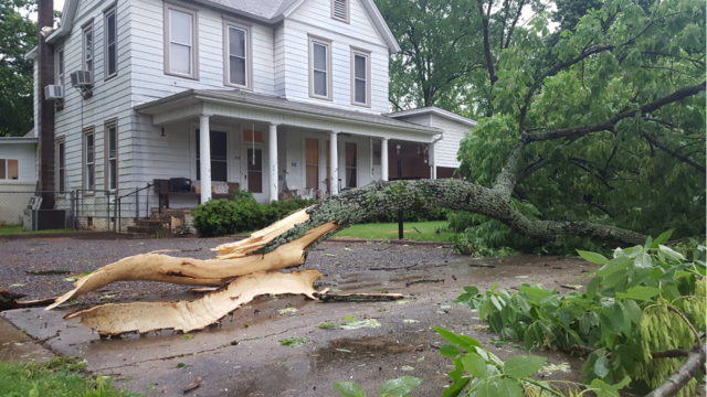 Large tree limb down on S. Glenwood in Russellville_1493227331927.PNG