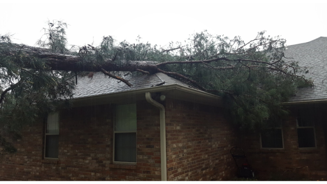 Storm damage along South Durant Ave. in Russellville 1_1493227334608.PNG