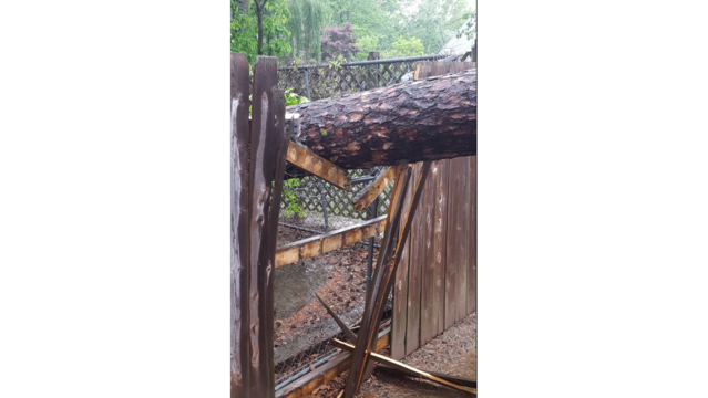 Storm damage along South Durant Ave. in Russellville 2_1493227346819.PNG
